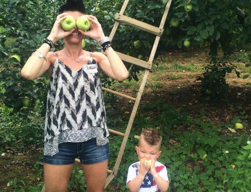 Red Apple Barn By Carolina Marrelli